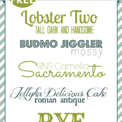 Free Font Friday | PicMonkey Fonts and Combinations