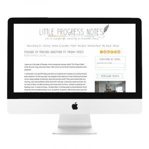 portfolio_littleprogressnotes