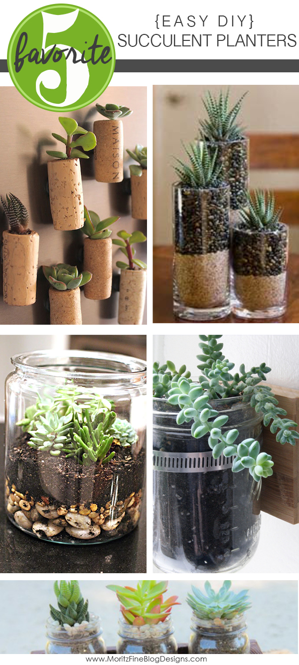 Easy Diy Succulent Planters Free Printable Included