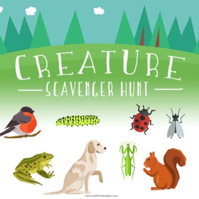 Summer Creature Scavenger Hunt