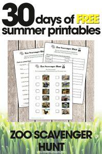 free summer printables | zoo scavenger hunt | fun summer activities for kids | free printable